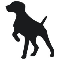 Belgian shorthaired pointer clipart royalty free library GSP vinyl sticker | Dog stuff | Pinterest | Vinyls and Stickers royalty free library