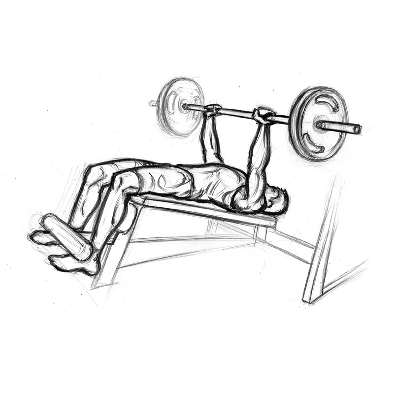 Bench press exercise clipart graphic free Decline Bench Press | Chest Exercise with Barbell - Clip Art Library graphic free