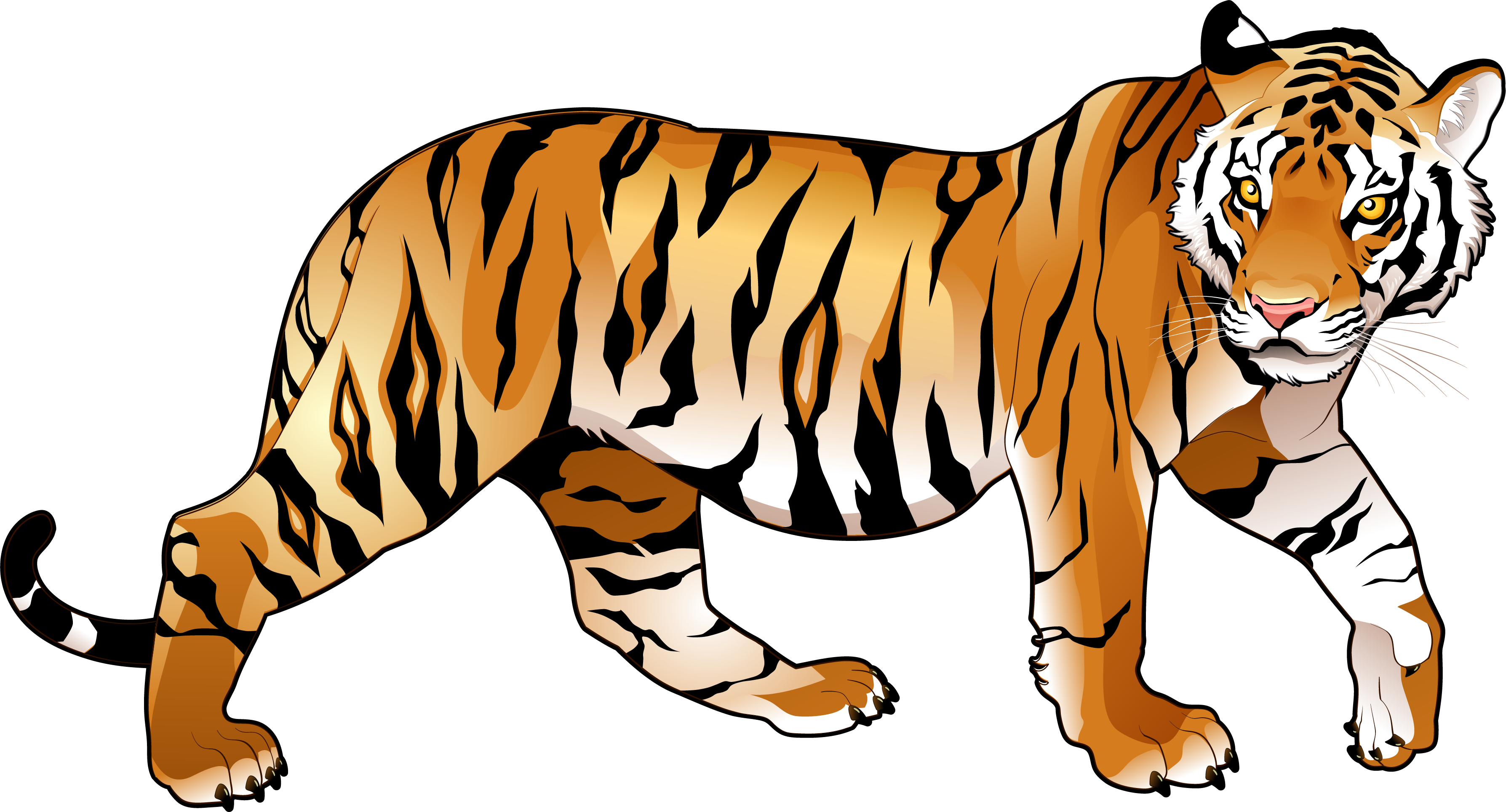 Free basketball clipart tiger png free library Bengal Tiger Clipart at GetDrawings.com | Free for personal use ... png free library