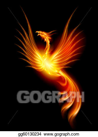 Berd on fire clipart banner transparent stock Vector Art - Burning phoenix. EPS clipart gg60130234 - GoGraph banner transparent stock