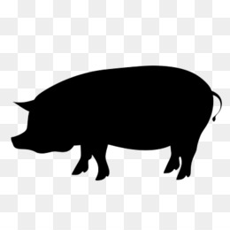 Berkshire pig clipart jpg free library Berkshire Pig transparent png images & cliparts - About 3 png images ... jpg free library