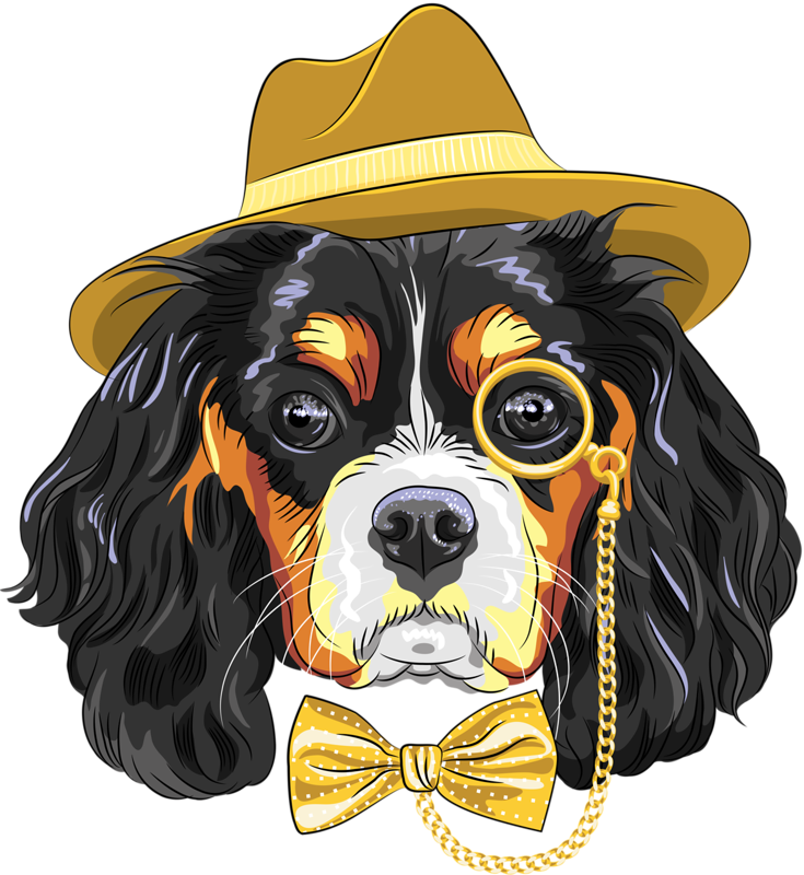 Bernese mountain dog clipart clip royalty free download 0_e3057_e5590df5_XL.png | Album clip royalty free download