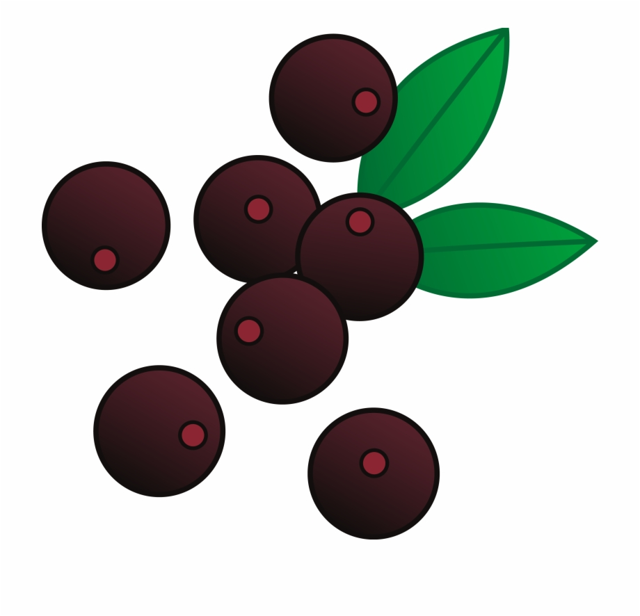 Berries on a bush clipart graphic royalty free library Berries Cliparts - Transparent Blueberry Clipart Free PNG Images ... graphic royalty free library