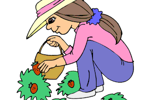 Berry picking clipart clip library download Pictures of fruits and vegetables clipart 5 » Clipart Portal clip library download