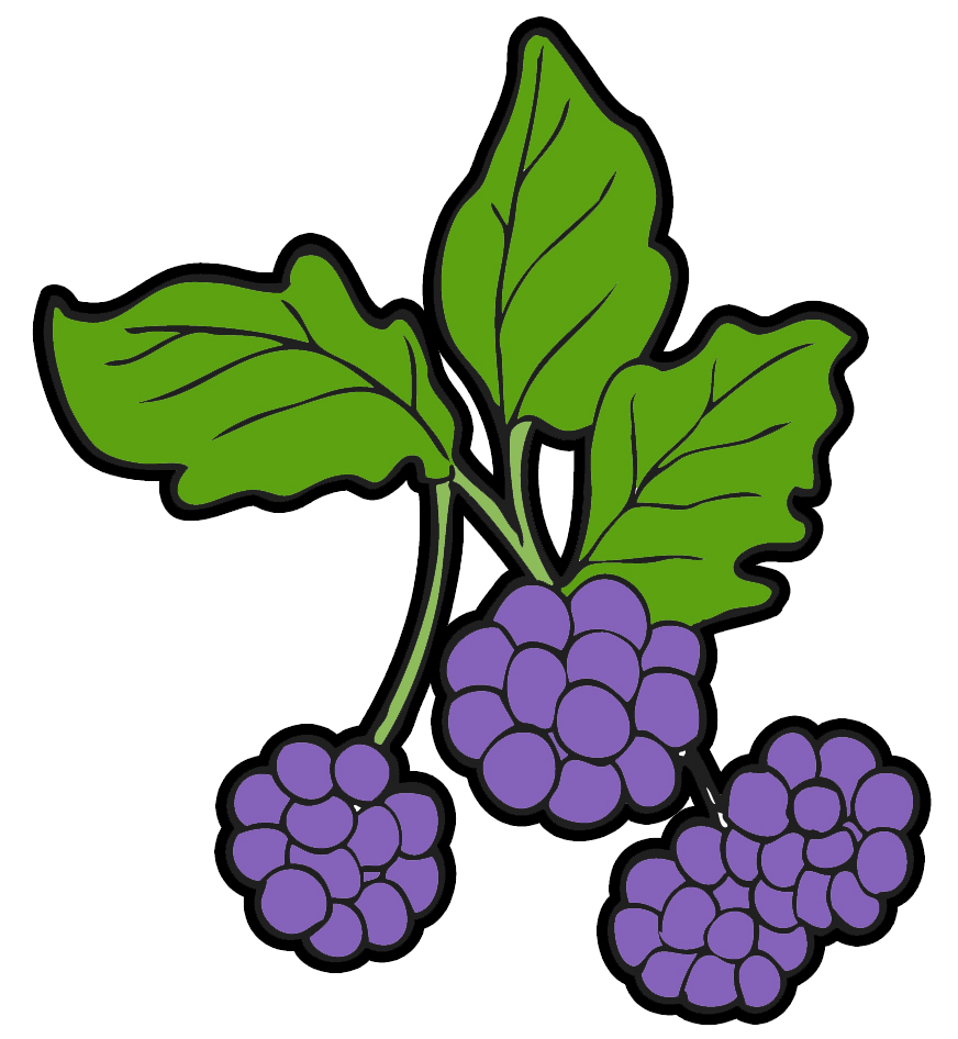 Berry plant clipart clip art Free Black Berries Cliparts, Download Free Clip Art, Free Clip Art ... clip art
