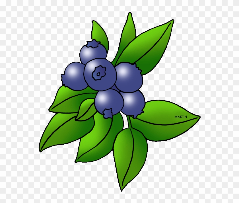 Berry plant clipart download Picture Royalty Free Library Image Of Blueberry Blueberries ... download