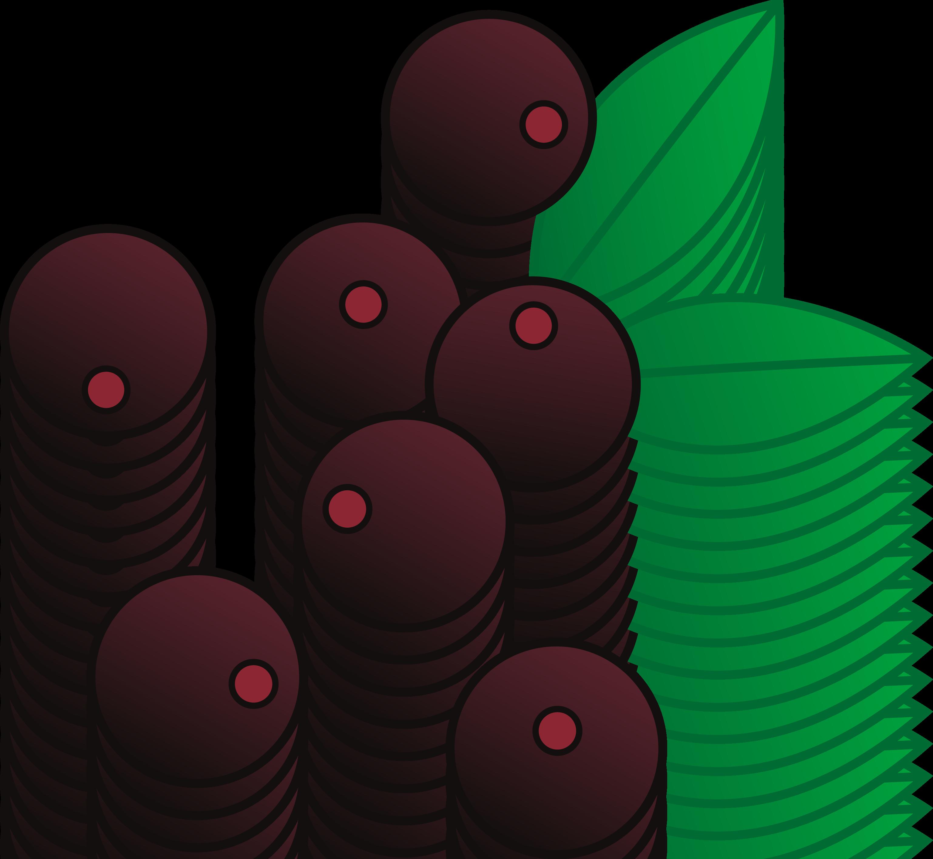 Berry vine crown clipart clipart Berry Cartoon Clipart clipart