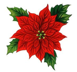 Christmas borders download best. Free poinsettia clipart images