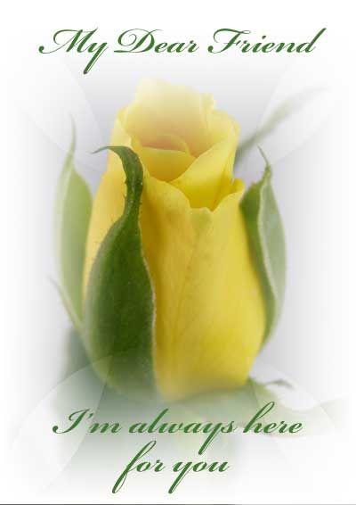 Beta sigma phi yellow rose clipart clip art freeuse Beta sigma phi yellow rose clipart - ClipartFox clip art freeuse