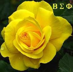 Beta sigma phi yellow rose clipart picture freeuse library 1000+ images about Beta Sigma Phi on Pinterest | Friendship ... picture freeuse library