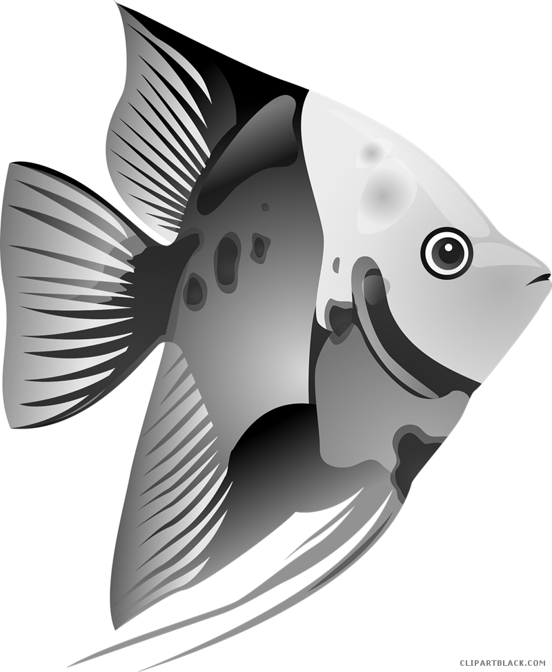 Cute beta fish clipart vector royalty free Fish - Page 8 of 56 - ClipartBlack.com vector royalty free