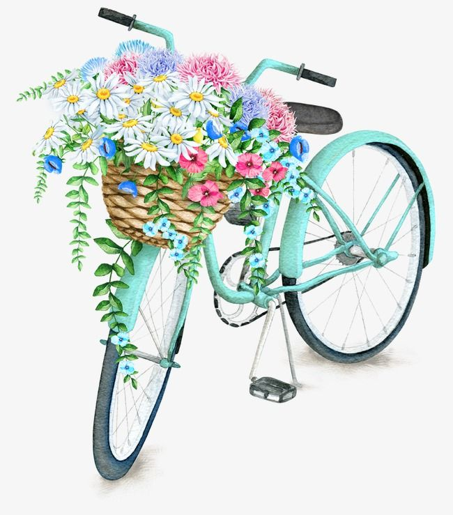 Bicycle baskets clipart jpg royalty free library Exquisite Aesthetic Bicycle Basket, Beautifully Basket, Flower ... jpg royalty free library