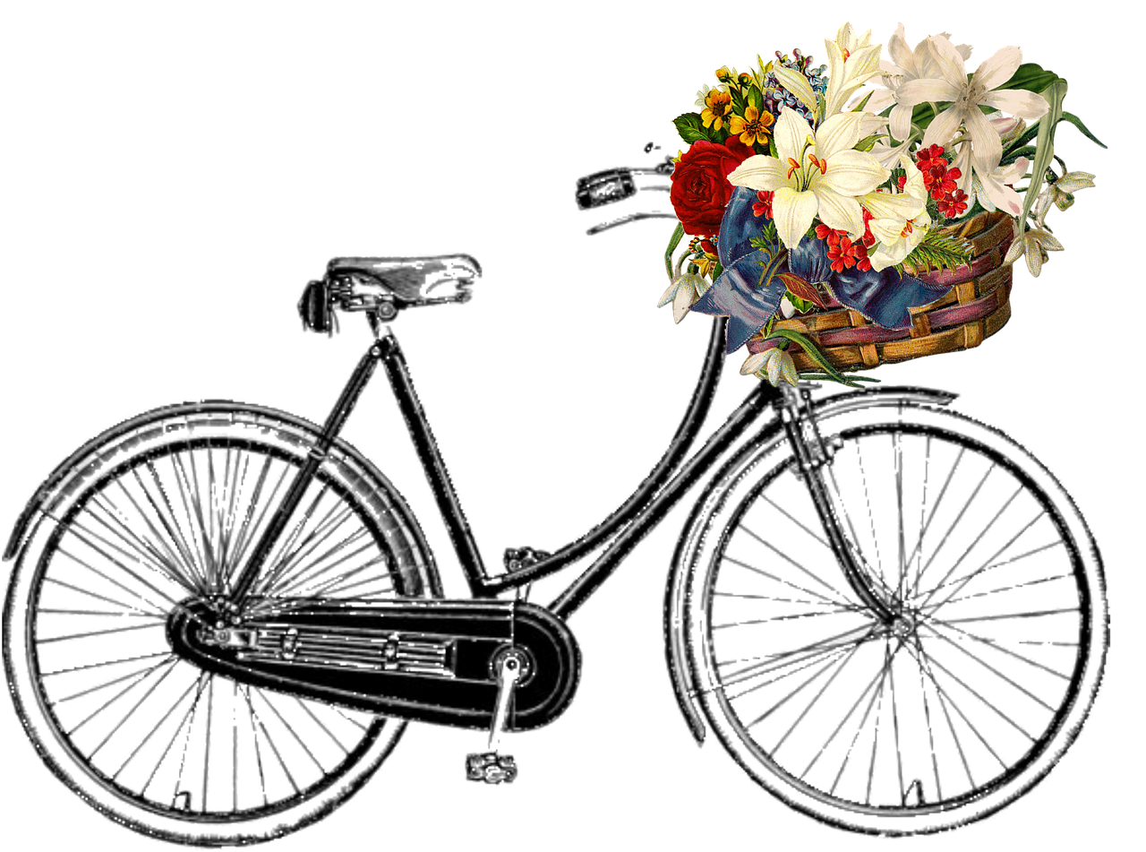 Bicycle with flower basket clipart png transparent library Free Image on Pixabay - Bicycle, Flower, Bunch, Transport ... png transparent library