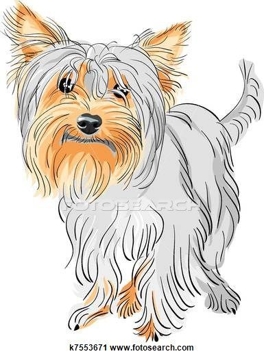 Biewer terrier clipart png free download Clipart of vector pedigreed dog Yorkshire terrier #yorkshireterrier ... png free download