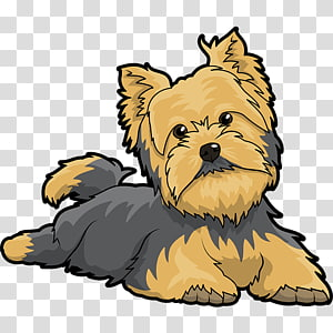 Biewer terrier clipart clip art black and white library Black and tan Yorkshire terrier puppy illustration, Happiness Monday ... clip art black and white library