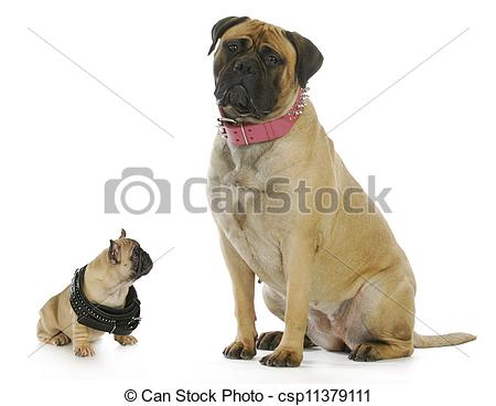 Big and small dog clipart picture transparent Big and small dog clipart - ClipartFest picture transparent
