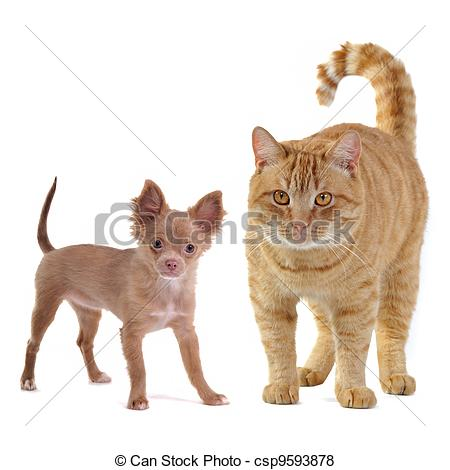 Big and small dog clipart jpg Large Small Dog Clipart - Clipart Kid jpg