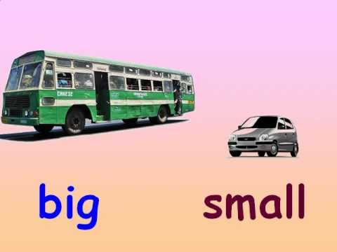 Big and small objects clipart png transparent library Kids Maths - Concepts of Big and Small - YouTube png transparent library