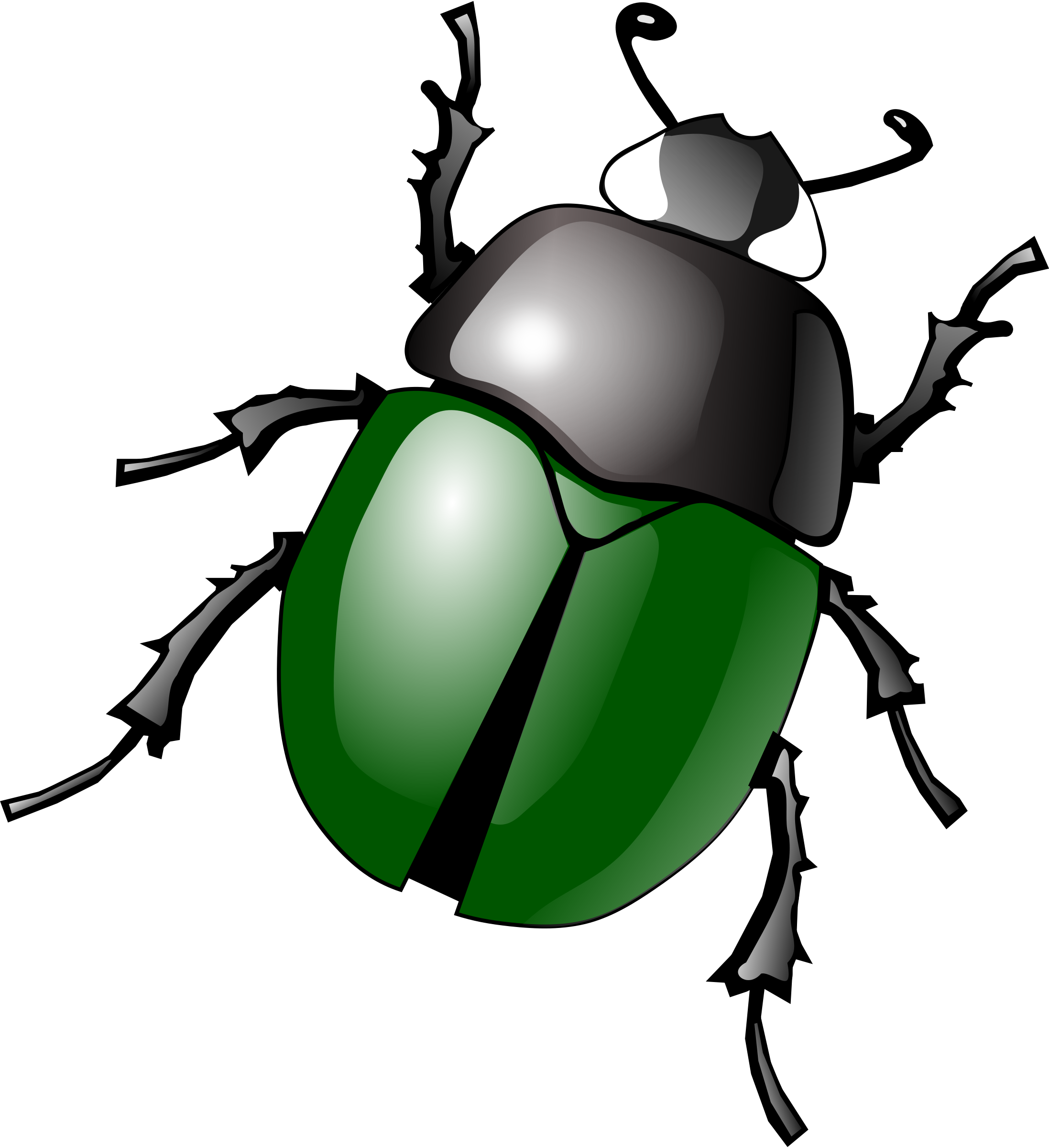 Big bug small bug clipart banner Bugs PNG images free pictures, bug PNG banner