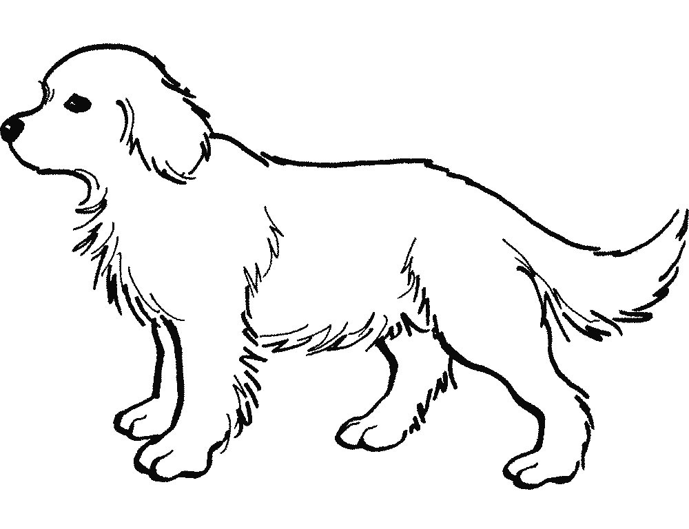 Large white clipartfest the. Big dog clipart