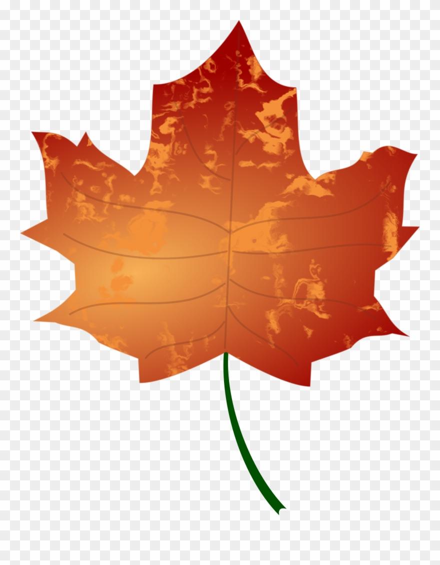 Big fall leaf clipart clipart download Autumn Leaf Big Image Png - Autumn Leaf Vector Png Clipart (#979338 ... clipart download