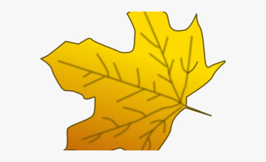 Big fall leaf clipart clip art free download Leaves Clipart Yellow - Big Leaf Clip Art #1065965 - Free Cliparts ... clip art free download