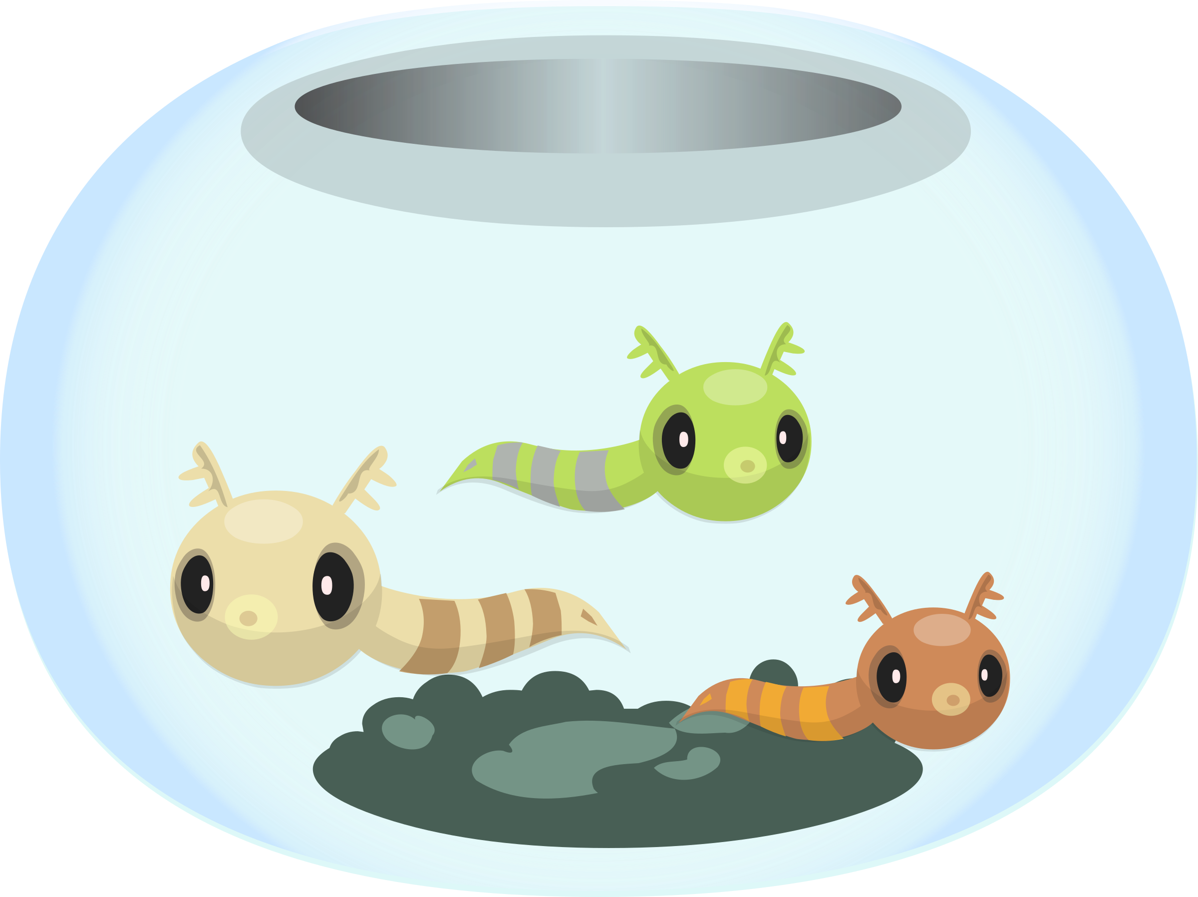 Clipart of a fish bowl freeuse Clipart - Firebog fishbowl from Glitch remix freeuse
