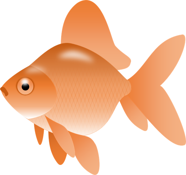 Big fish eating small fish clipart graphic freeuse download Small Fish Clipart at GetDrawings.com | Free for personal use Small ... graphic freeuse download
