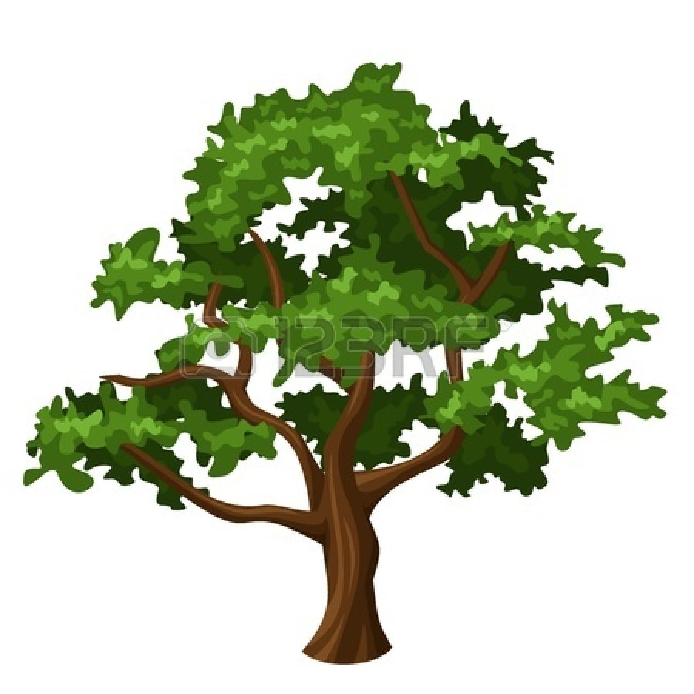 Oaktree clipart picture freeuse Free Oak Tree Clipart, Download Free Clip Art, Free Clip Art on ... picture freeuse