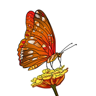 Biggest free clipart site. Largest clipartfox butterfly clip