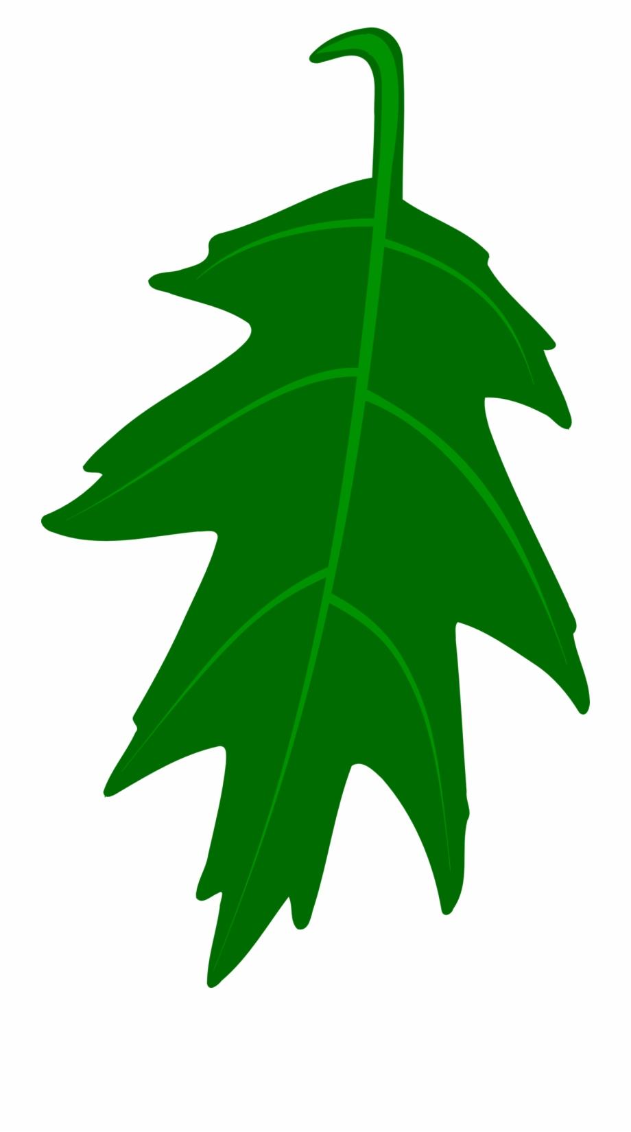 Major oak leaf clipart black and white picture transparent download Oak Leaf Vector By Mortris On Clipart Library - Green Oak Leaf ... picture transparent download