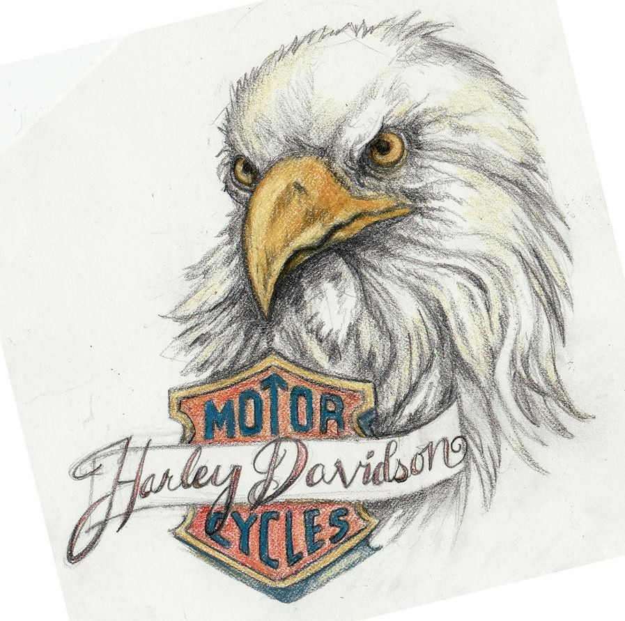 sample tattoos | Harley Davidson Eagle Sample Tattoo | 1 | Harley ... graphic transparent library