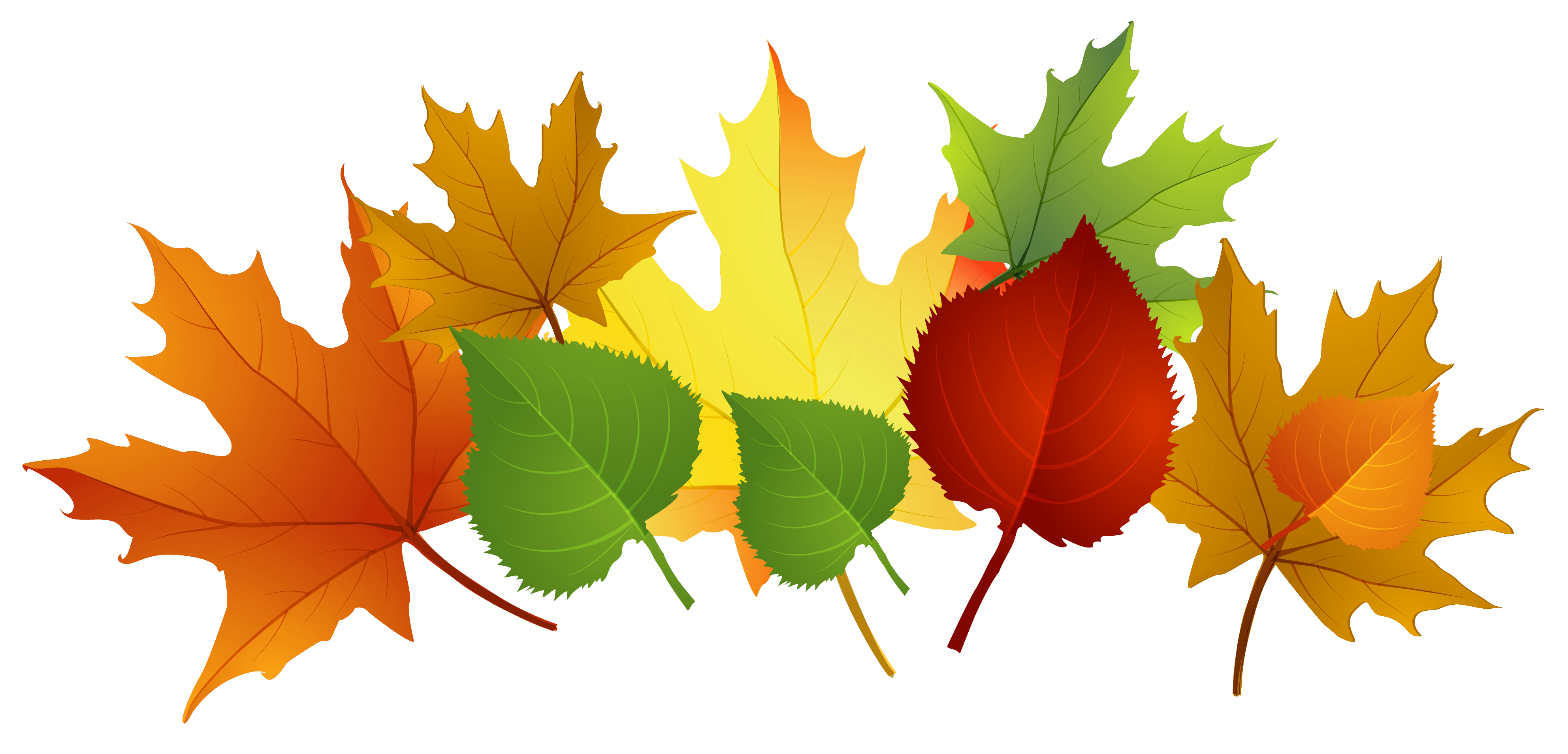 Clipart images of fall leaves picture transparent stock Free Fall Family Cliparts, Download Free Clip Art, Free Clip Art on ... picture transparent stock