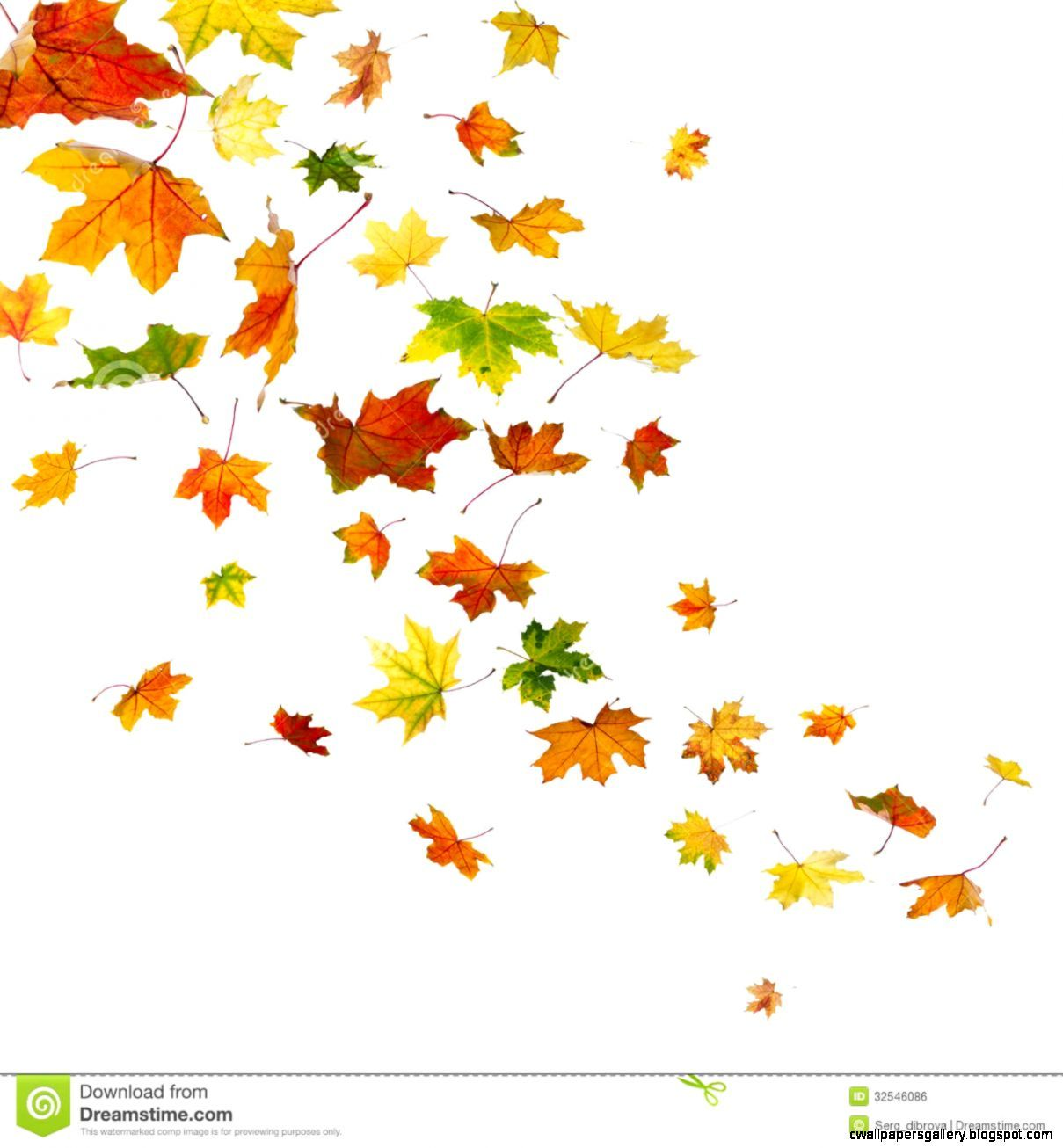 Falling autumn leaves clipart free download Found on Bing from cwallpapersgallery.blogspot.com | shirts in 2019 ... free download
