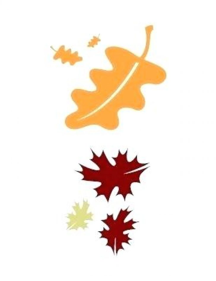 Bing clipart fall leaves transparent library bing free clip art fall leaf frames | www.thelockinmovie.com transparent library