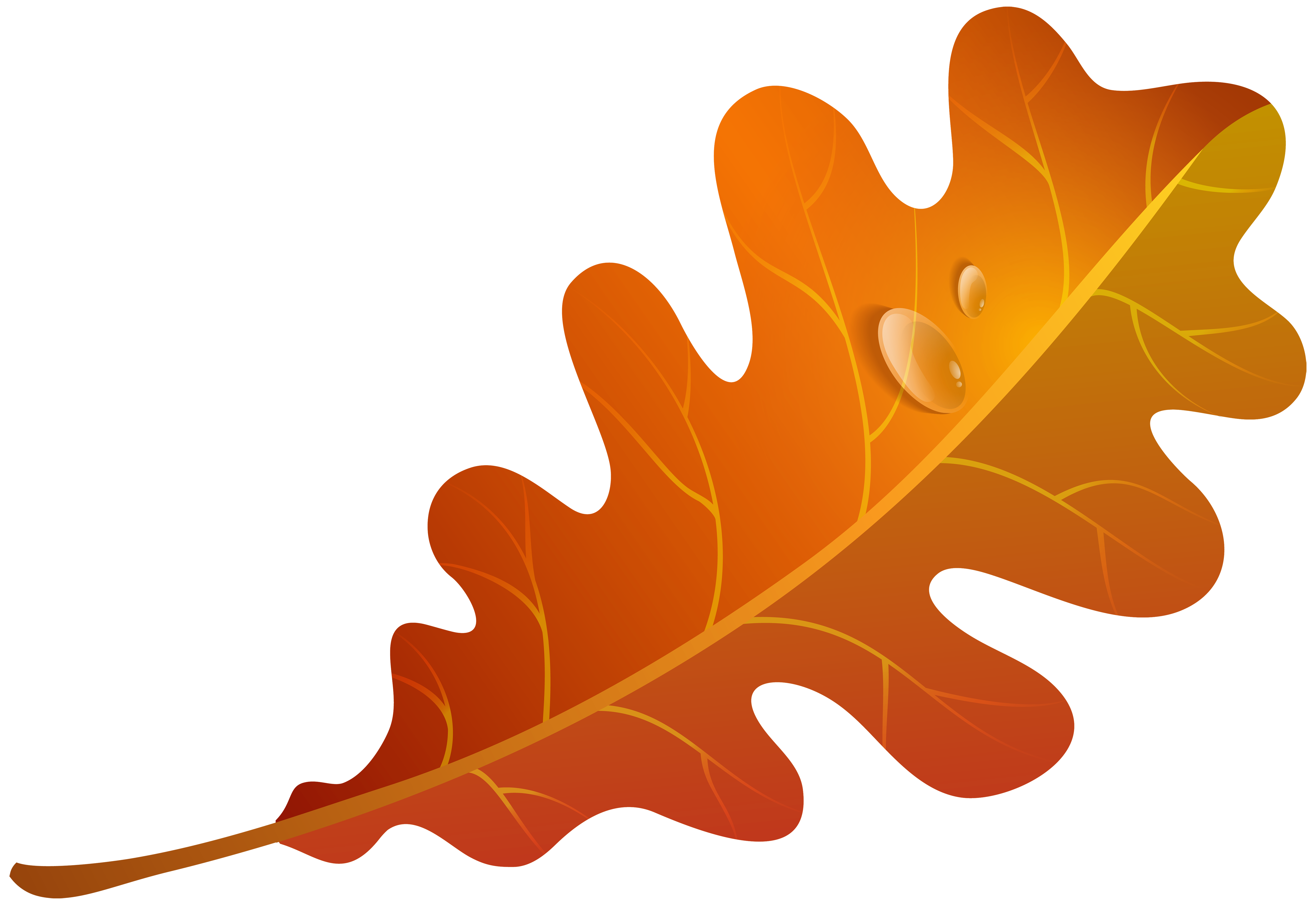 Clipart oak leaf transparent orange download Found on Bing from moziru.com | shirts | Orange leaf, Clip art ... download