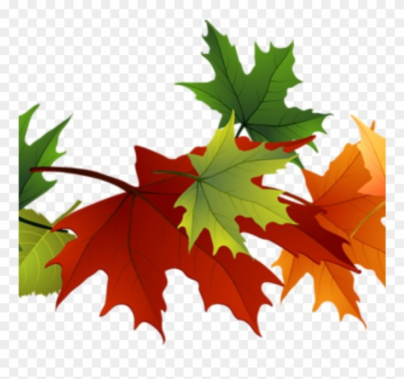 Bing clipart leaves fall clip art free library Fall Maple Leaf Clip Art | Jidileaf.co clip art free library