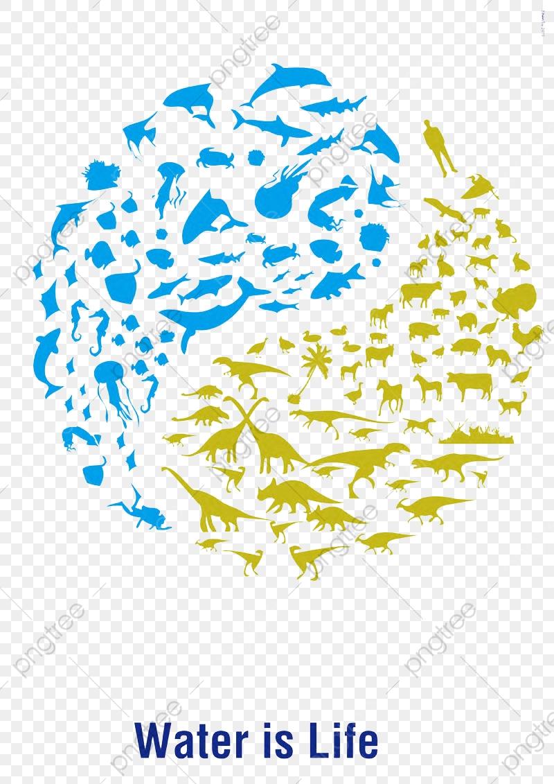 Biological Yin And Yang Fish, Fish Clipart, Biological, Yin And Yang ... free download
