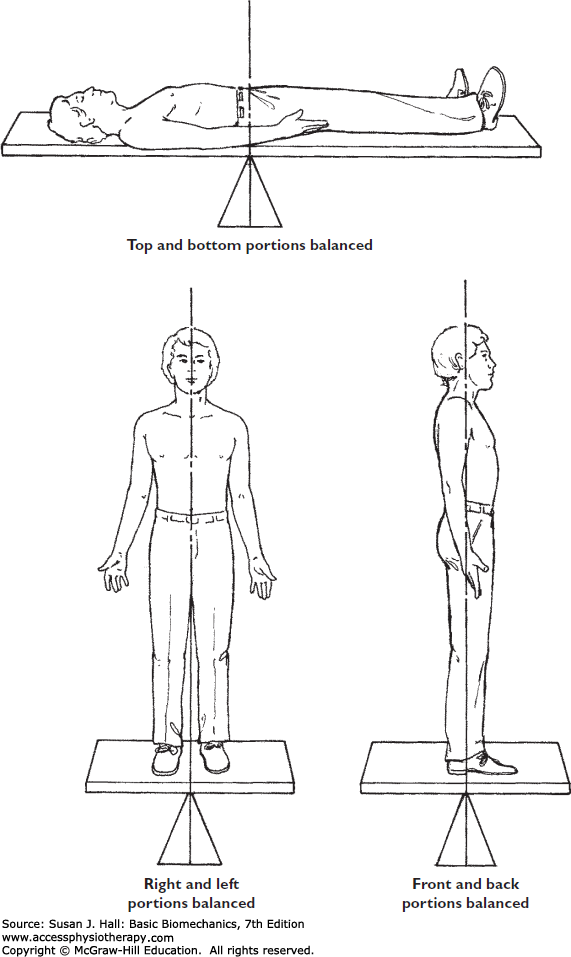 Equilibrium and Human Movement | Basic Biomechanics, 7e ... png black and white