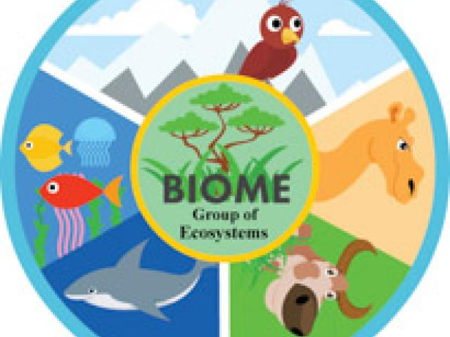 Biomes clipart clip transparent library Biomes clipart 7 » Clipart Station clip transparent library
