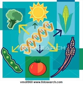 Bioyechnology clipart clip art library download Biotechnology clipart 2 » Clipart Portal clip art library download