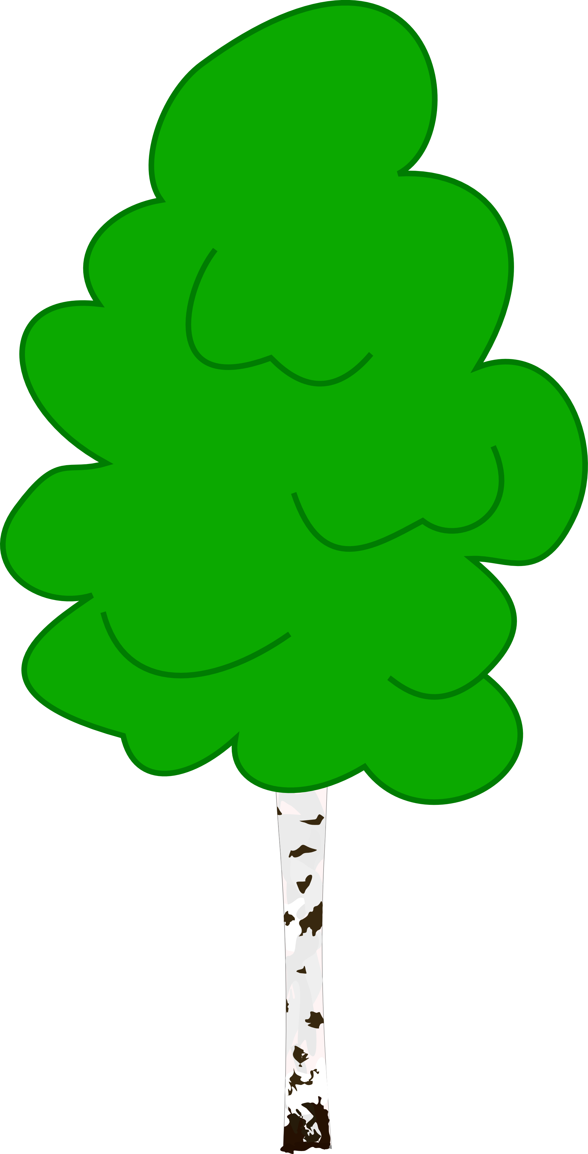 Rubber tree clipart png royalty free library Birch Clipart png royalty free library