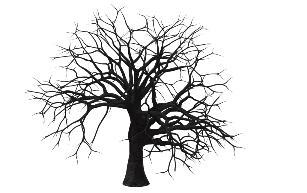 Hickory tree clipart image free stock Hickory Tree Silhouette at GetDrawings.com | Free for personal use ... image free stock