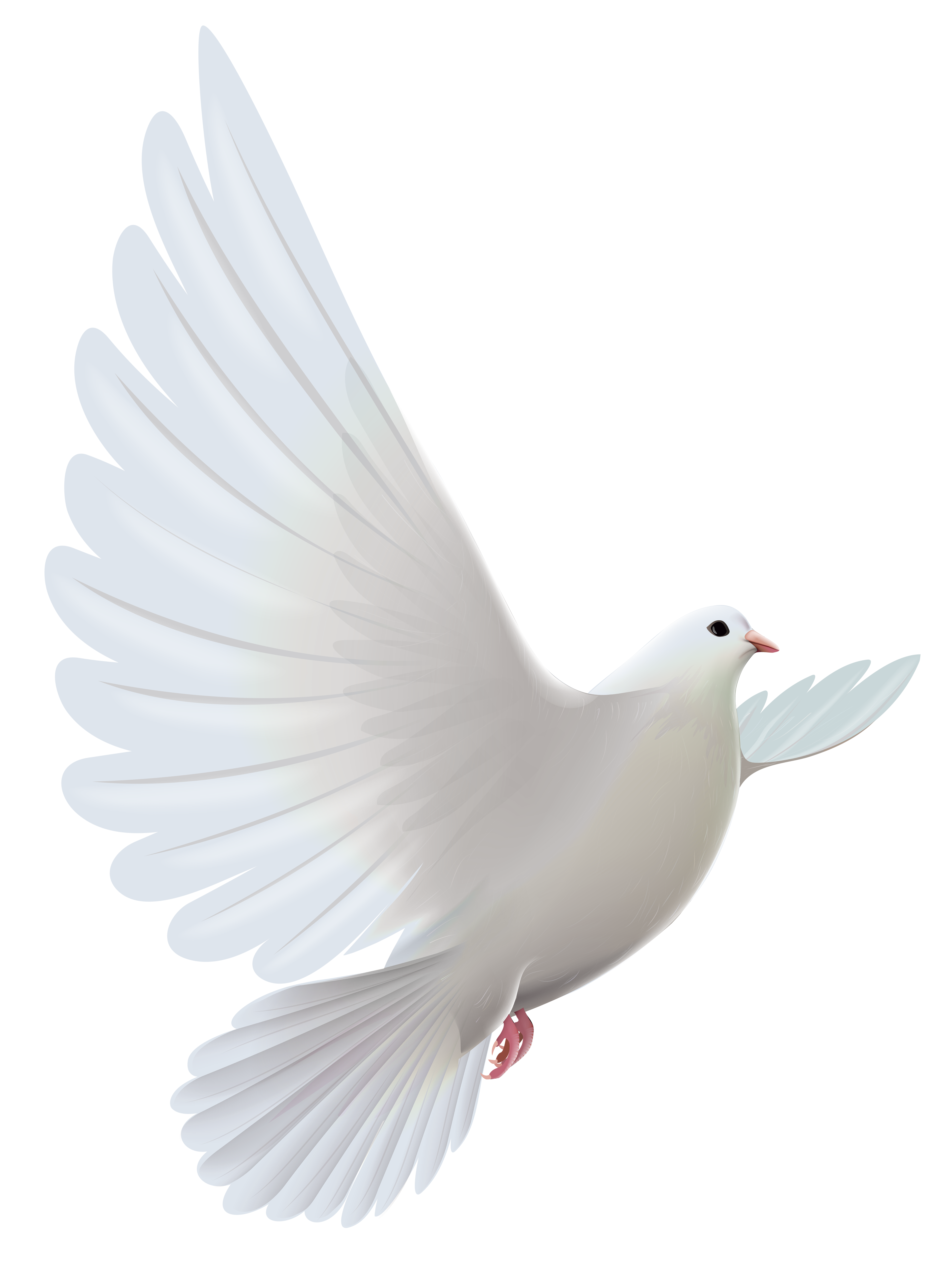 Bird and cross clipart clipart royalty free library White Dove Transparent PNG Clipart | Gallery Yopriceville - High ... clipart royalty free library