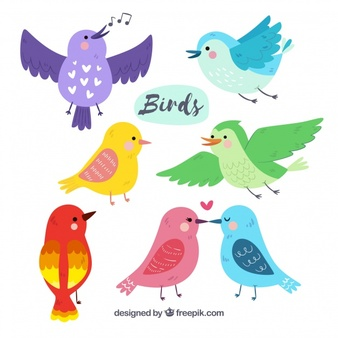 Bird borders clipart free graphic library Bird Vectors, Photos and PSD files | Free Download graphic library