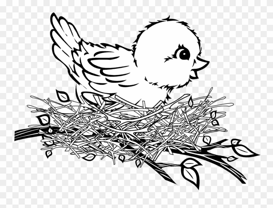 Banner Cartoon Birds Patterns Pinterest - Bird In Nest Clipart - Png ... vector royalty free
