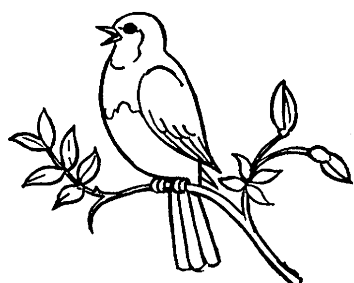 Bird clipart black and white free jpg library stock Birds Clipart Black And White | Free download best Birds Clipart ... jpg library stock