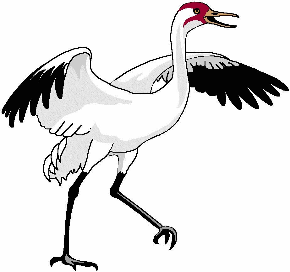 Crane bird clipart jpg freeuse library Within Crane Bird Clipart KcMnXKzGi | Clip Art jpg freeuse library