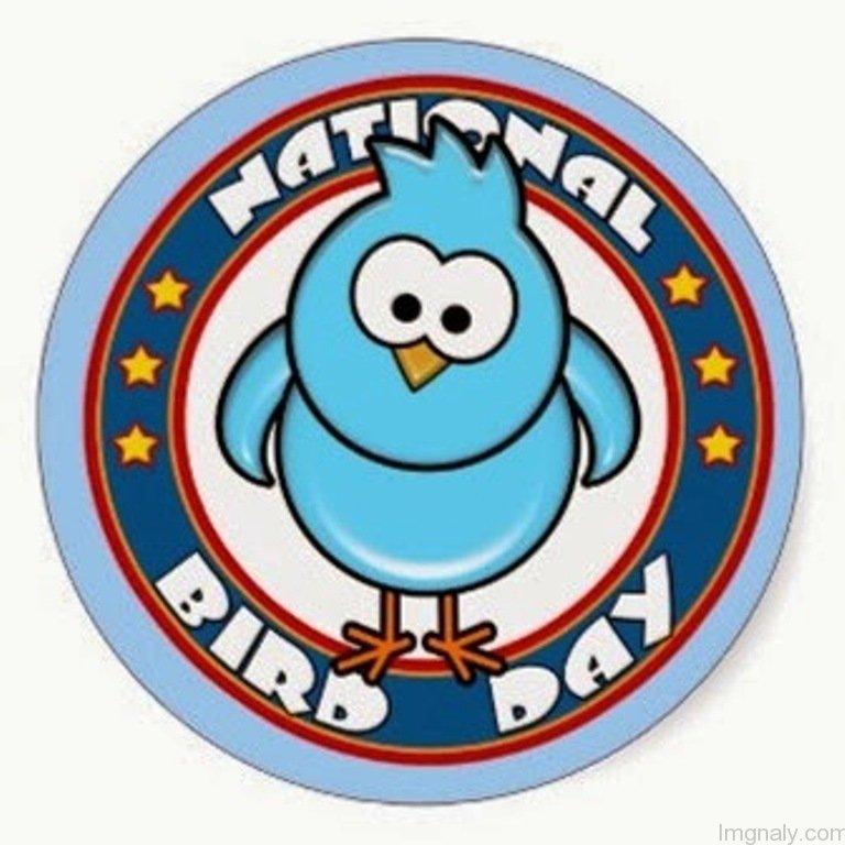 Bird day clipart