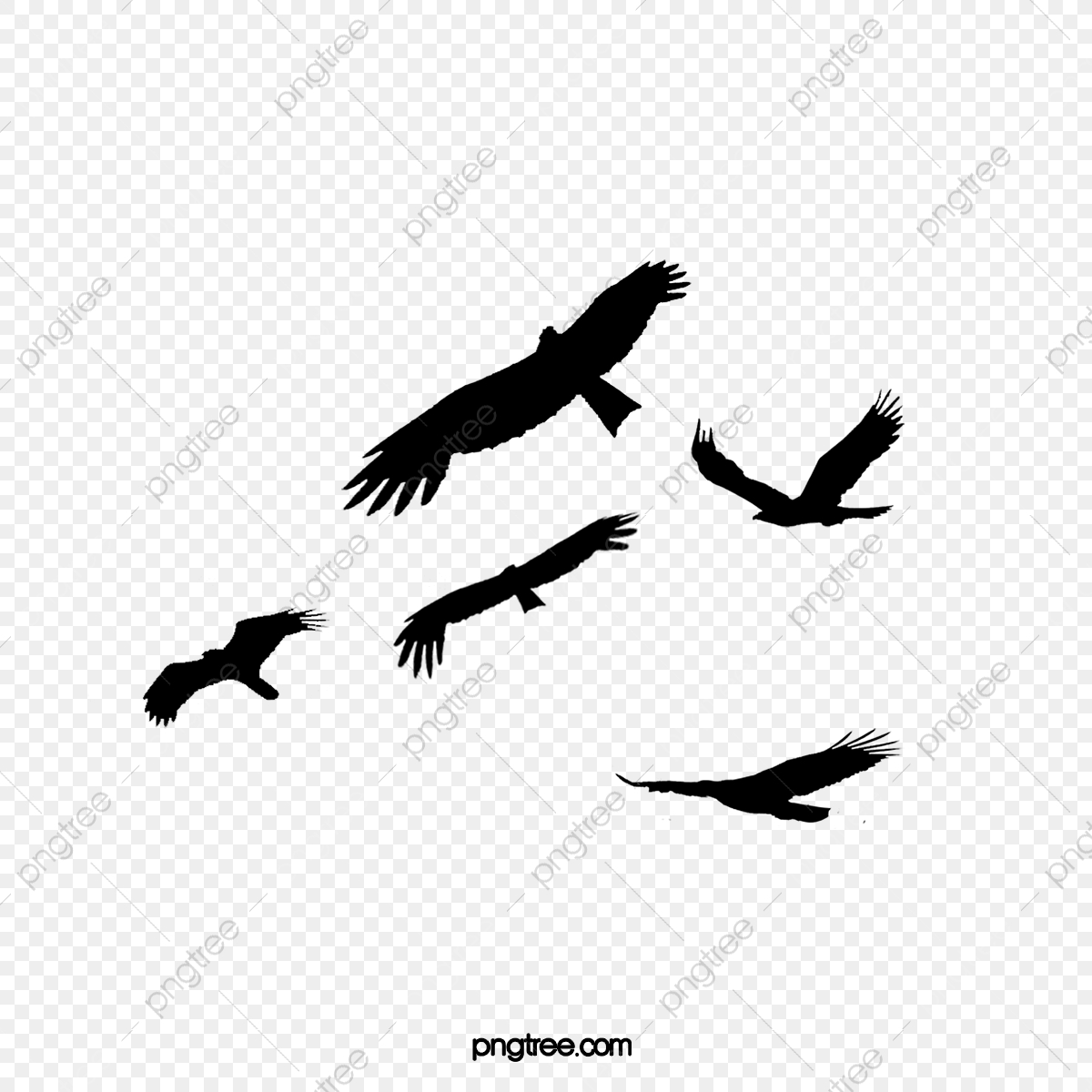 Bird diving clipart graphic stock Flying Bird Silhouette, Fly, Bird, Dayan PNG Transparent Clipart ... graphic stock